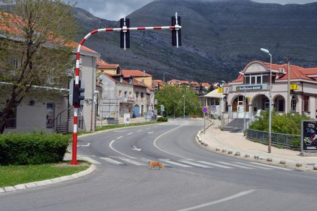 Trebinje - Policijski Cas | Trebinje 24 | Trebinje Live | Trebinje danas